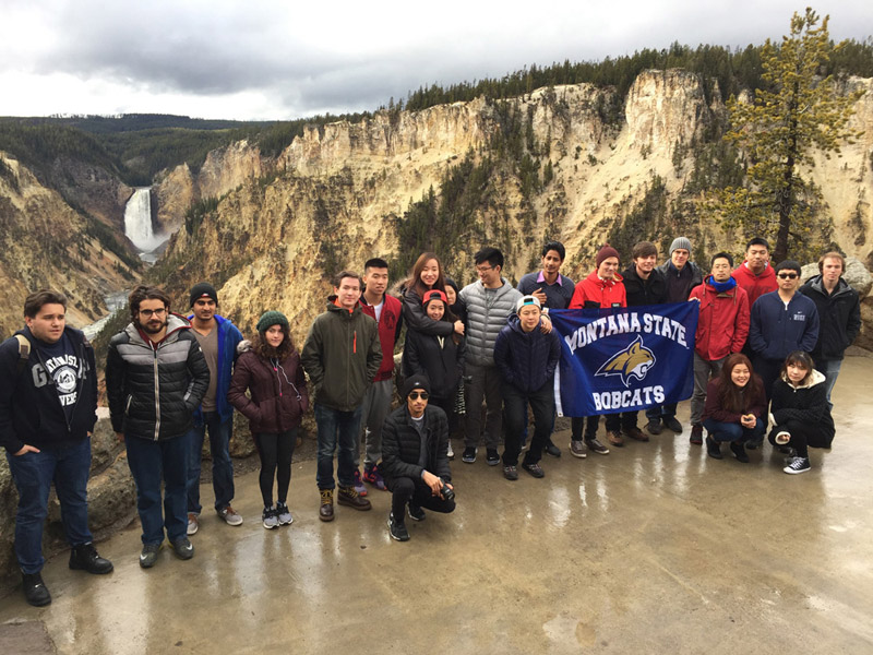 Blog post image for A.C.E. and MSU students at Yellowstone!