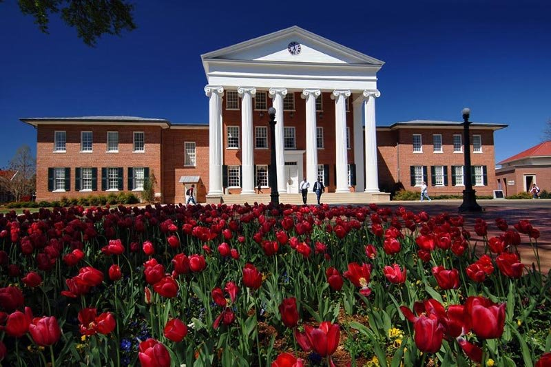 Blog post image for Welcome to the University of Mississippi